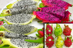 Photo: Slices of dragon fruit on a plate. Inset: Whole dragon fruit.