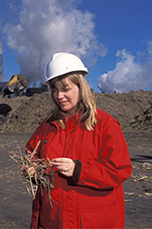 Photo: ARS chemist Gillian Eggleston studies sugarcane and associated trash such as leaves, tops and muddy soil. Link to photo information
