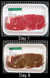 Photo: A bright red steak on day one compared to how brown the same steak was on day nine in a simulated retail display.