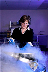 Photo: ARS plant physiologist Gayle Volk works with citrus varieties, breeding lines and wild citrus species being placed in long-term liquid nitrogen storage. Link to photo information